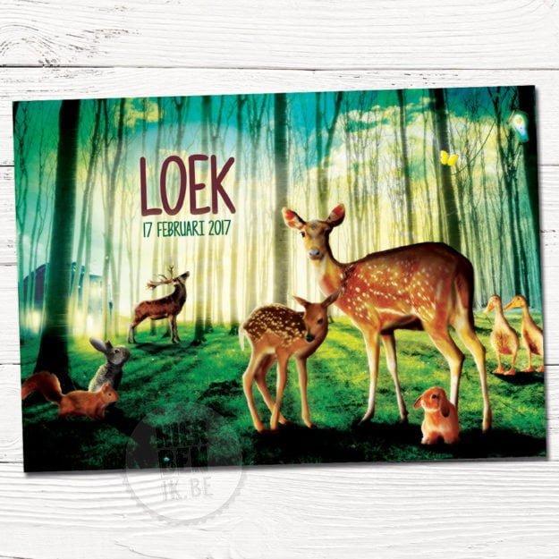 sprookjes geboortekaartje met hertjes en dieren in een bos en magisch licht